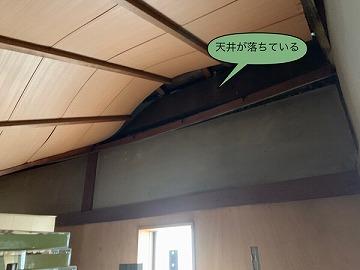 落ちた天井