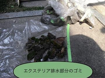 エクステリア排水部のゴミ