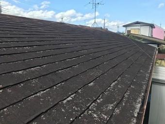 汚れやコケが繁殖した屋根