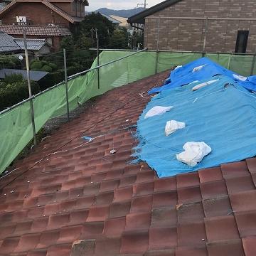 応急処置後の屋根