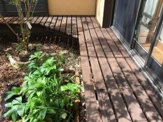 縁側濡れ木塗装後