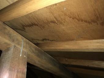 天井裏雨漏り