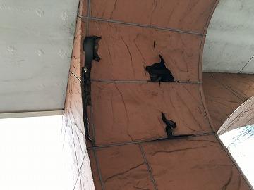損傷した柱部分