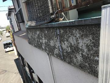 掻き落としの外壁