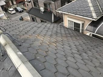 屋根の全体