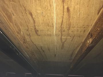 天井裏の雨染み