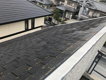 屋根 全体写真