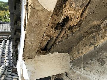 天井の崩れ